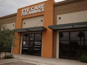 Eye Care for Animals Avondale, AZ
