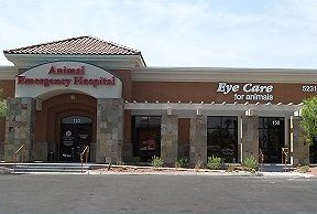 Las Vegas Practice - Eye Care for Animals - Eye Care for Animals